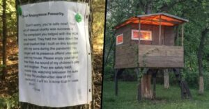 Father note to Karen went viral, who forced him to tear down the kids treehouse
