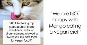 Drama started when vegan step-daughter asked their parents to change their cat's diet to vegan